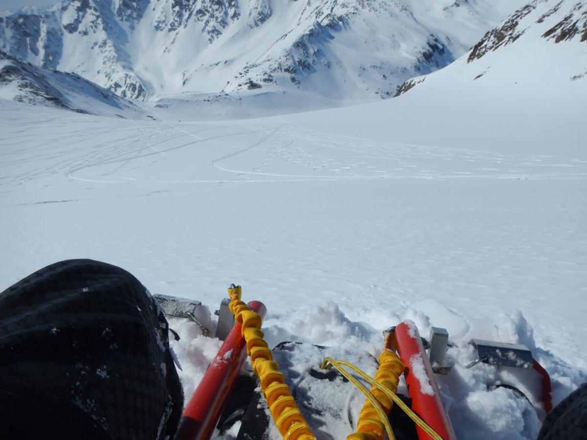 SNOWBRAKER FreeRide Alpin Schlitten